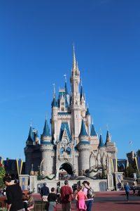 Theme Park Attorney in Orlando